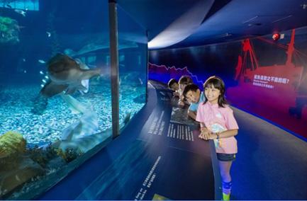 香港海洋公园-勇闯寻鲨探秘
